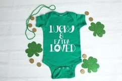 Web Font Pinch Proof - A Hand-Lettered St. Patrick's Day Fon Product Image 3