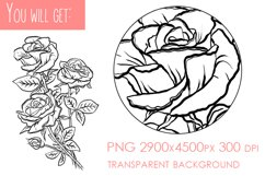 Flowers sublimation, hand drawn roses PNG Product Image 2
