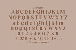 Arsene Modern Serif Typeface Product Image 4