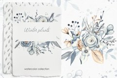 Winter plants watercolor collectoin Product Image 1