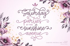 Samink Monoline font & Extras Product Image 2