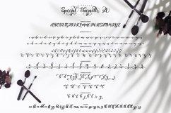 Kitahara - Handwriting Brush font Product Image 6