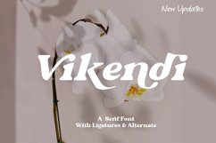 Vikendi | New Update Product Image 1