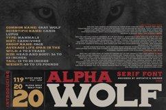 Alpha wolf - Serif font Product Image 6
