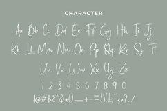 Black Shine Script Brush Font Product Image 2