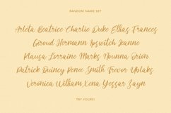 Acronits Script Font Product Image 5