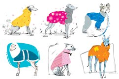 Dogs In Popons - It's all about Love Product Image 2