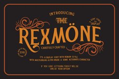 REXMONE Product Image 1