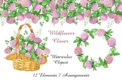 Watercolor wildflower clover. Wildflower clipart. St.Patrick Product Image 1