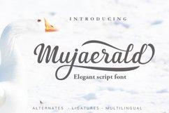 3 in 1 Premium script font Product Image 4