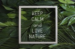 Nature Display Line Font Product Image 5