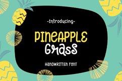 Pineapple Grass || handwritten font Product Image 1
