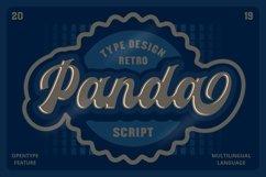 Panda Retro Script Font Product Image 1