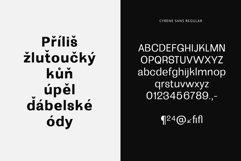 Cyrene Sans Product Image 3