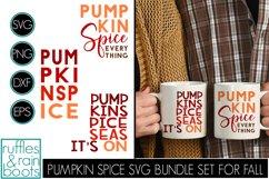 Pumpkin Spice SVG Bundle - Tumblers, Frames, and More! Product Image 1