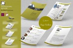 Profesional Resume Product Image 2