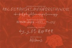 Selynite   A Signature Font Product Image 3