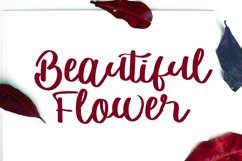 Monatifa   Beautiful Script Font Product Image 2