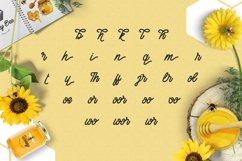 Honey Bee Product Image 3