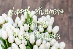 Spring Tulips Font - A Fun Hand Lettered Serif Font Product Image 2