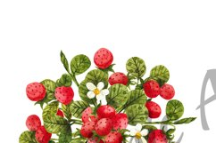 Watercolor strawberry, watercolor clipart with berries and l Product Image 5