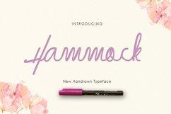 Hammock Product Image 1
