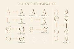 Mirabela - Lovely & Classy Serif Product Image 15