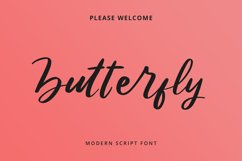 Butterfly Modern Script Font Product Image 6