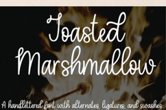 Toasted Marshmallow - A handlettered script font Product Image 10