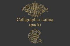Calligraphia Latina Pack Product Image 3