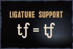 Vitage - elegant sans serif OTF font Product Image 3