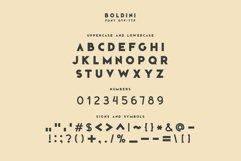 Boldini. SVG font family Product Image 4