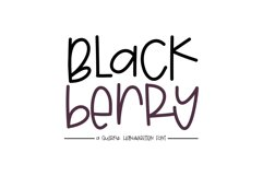 Blackberry - A Fun & Mismatched Font Product Image 1