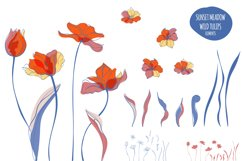 Sunset Meadow of Tulips Product Image 2