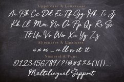 Ceverland Handwritten Brush Font Product Image 7