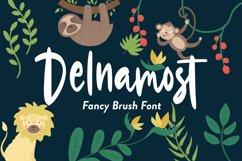 Delnamost - Fancy Font Product Image 1