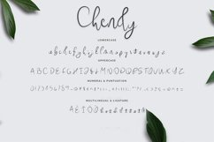Chendy Product Image 6
