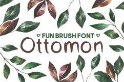 Ottomon Handwritten Brush Font Product Image 1