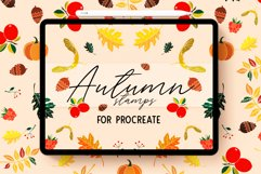 AUTUMN STAMP BRUSHES FOR PROCREATE Product Image 1