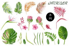 Watercolor tropical clipart, flower and leaves Product Image 5