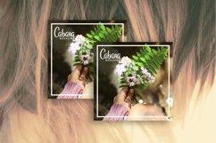 Adilea   Beauty Natrace Script Font Product Image 5