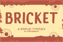 Bricket Product Image 1