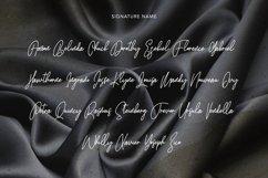 Satinwoods Slanted Signature Font Product Image 3