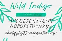 Wild Indigo Script Font Product Image 2