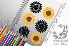 Sunflower Bundle SVG, Silhouette Studio, Cricut, Eps, Dxf Product Image 1