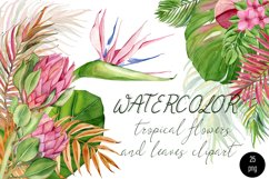 Watercolor tropical clipart, flower and leaves Product Image 1