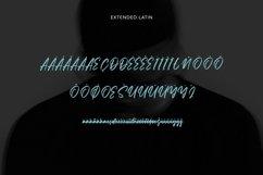 Web Font Litterbag - Fancy Script Font Product Image 4