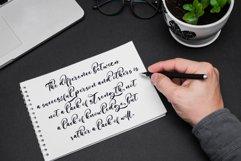 Still Sunshine // Script Font - WEB FONT Product Image 2