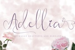 Mother Day font Bundle Product Image 14