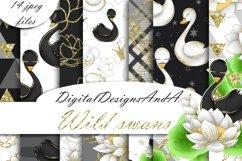 Swans digital paper Product Image 1